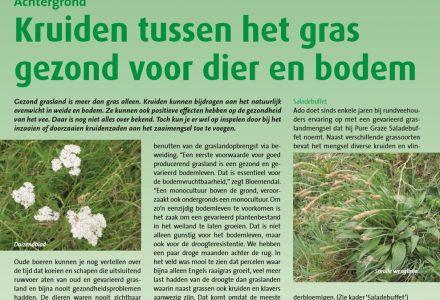 Kruidenrijk - Kruiden tussen het gras gezond voor dier en bodem 04-2010