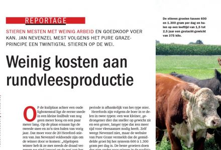 Rundveeboerderij - Weinig kosten aan rundvleesproductie