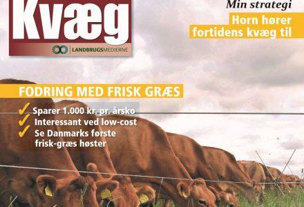 Kvæg - PG NxT-STEP in Denemarken