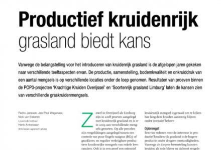 V-Focus - Productief kruidenrijk grasland biedt kans
