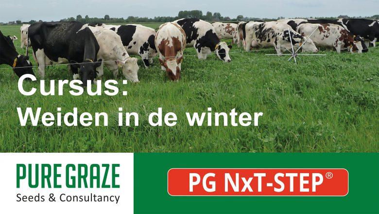 Cursus: Weiden in de winter
