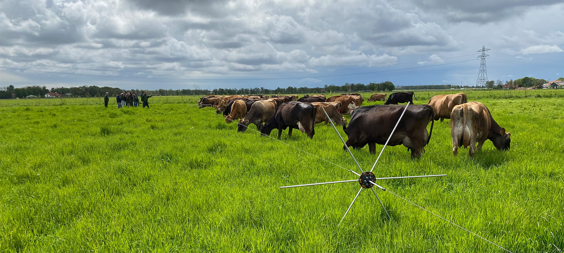 PG NxT-STEP Farming® - Beweidingscursus