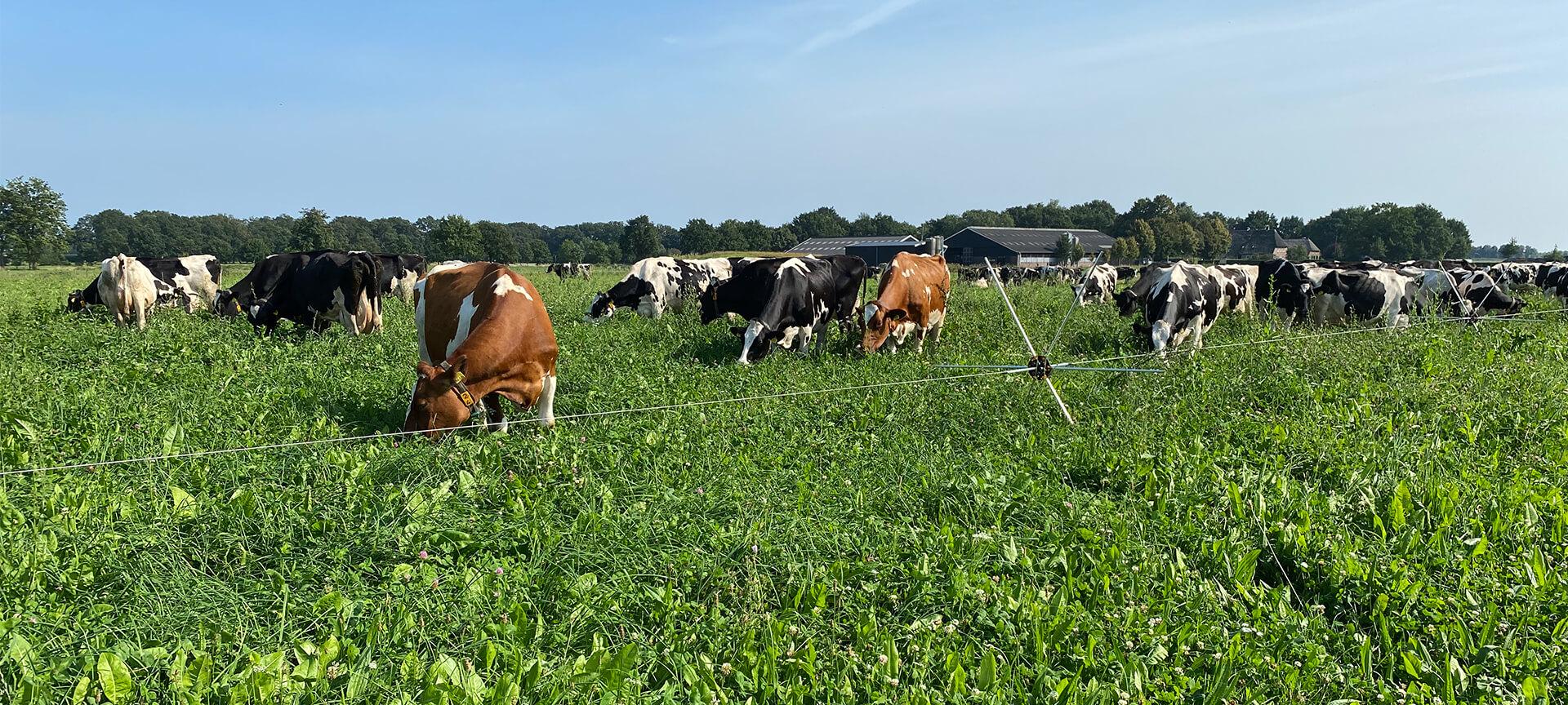 PG NxT-STEP Farming®  - Lage footprint